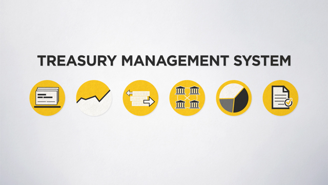 Das Treasury Management System der Commerzbank